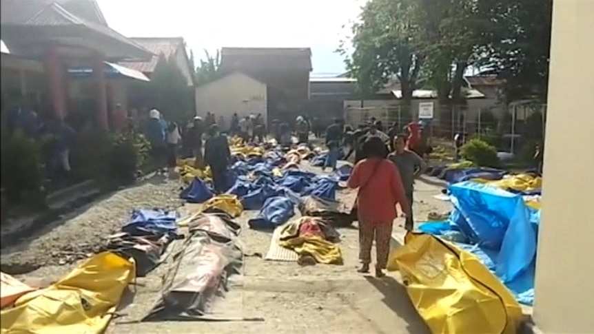 Hundreds of bodies have been recovered across Sulawesi.