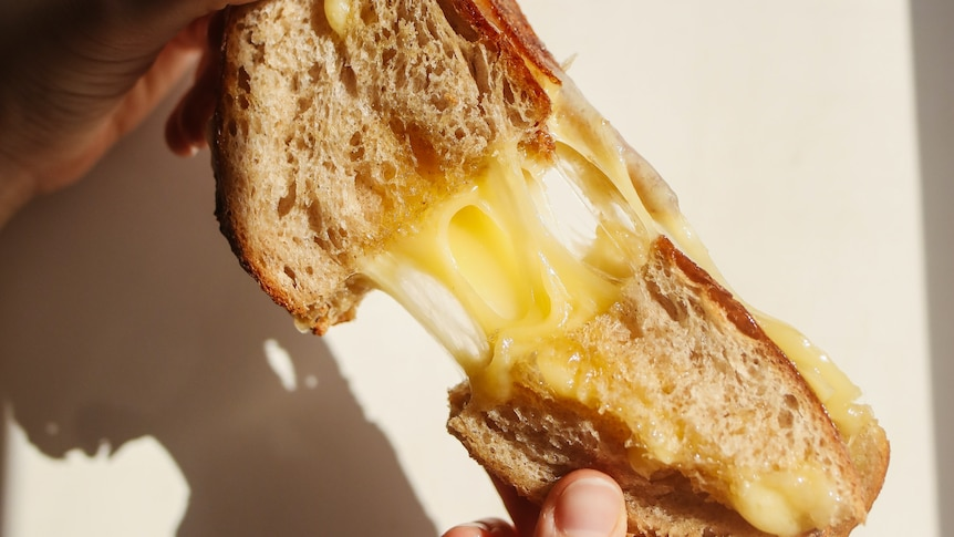 Toasted cheese sandwich, with cheese oozing from the middle, in a story about comfort food ideas for loved ones