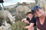 Michelle Hamilton and son Wylye tend to their flock of alpacas