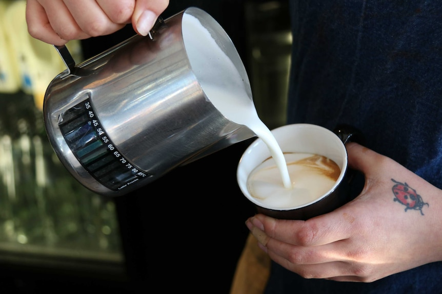 Cafe worker pours milk from a jug into a cup.