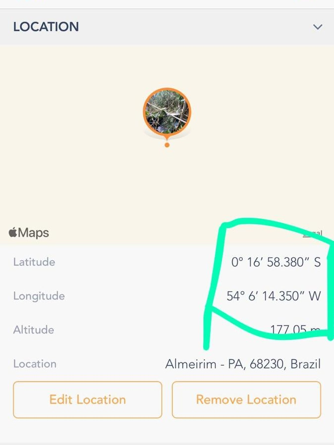 A screenshot of google maps showing a location with no surroundings