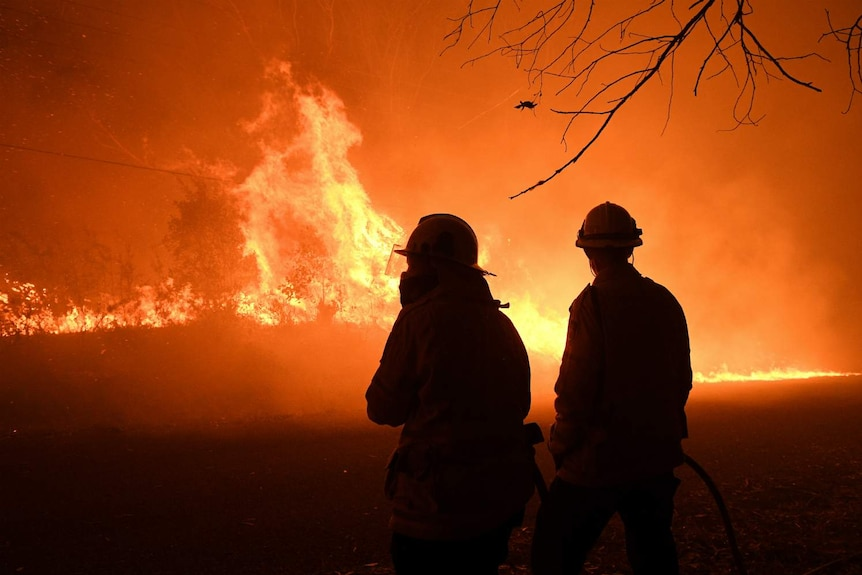 Two firefighters look at a wall of flames