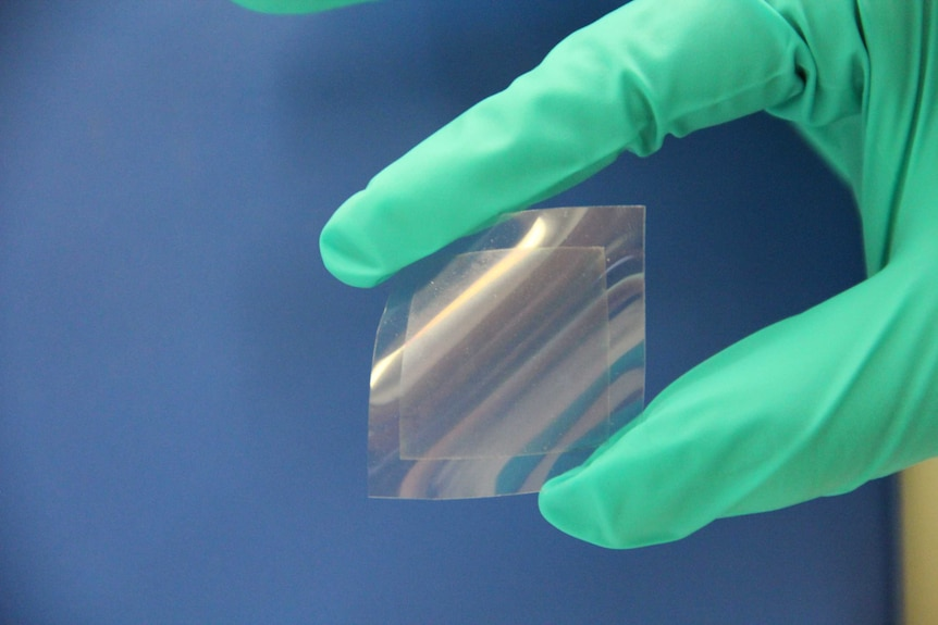 A translucent film is bent in a person's hand
