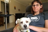 Lara Irvine sits with her small white dog. Next to her is an IV system which feeds her nutrients.