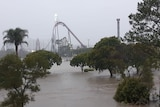 Movie World Carpark flooded, with cars submerged up to the roof
