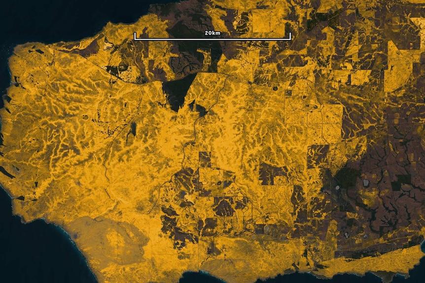 Satellite imagery showing fire scarring on Kangaroo Island