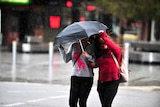 Two women cross the street in the rain with one protected under an umbrella and the other pulling it towards her.