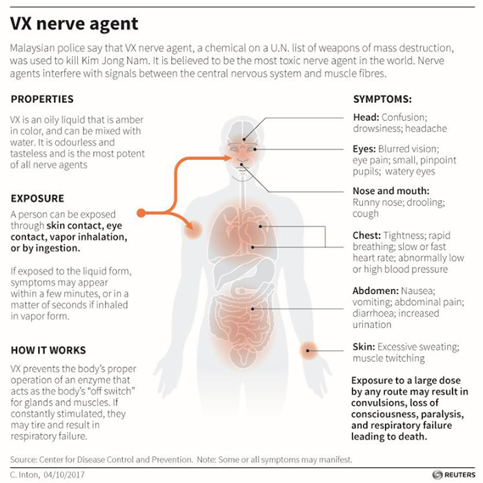 Illustrated fact box showing how the VX nerve agent affects different parts of the body.