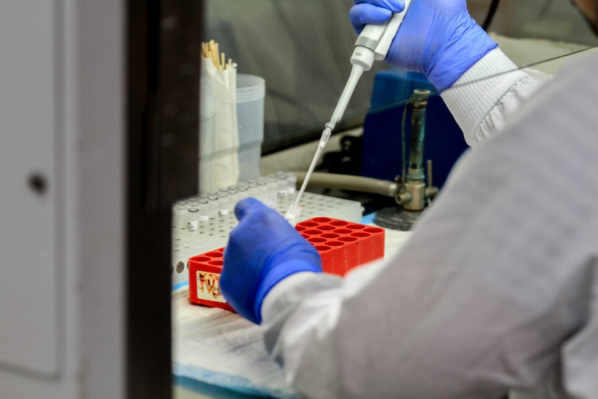 Person wearing blue gloves and white lab gown holds large plastic syringe in lab environment