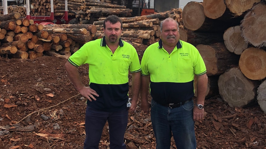 Two men in high-visibility shirts stand facing the camera with piles of logs behind them.