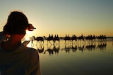 Camel train at Broome's Cable Beach