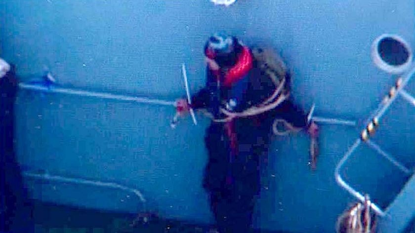 An activist from Sea Shepherd remains tied up