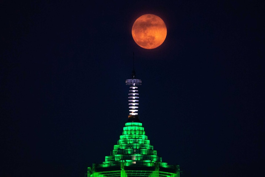 Bright orange full moon in sky about a high-rise tower lit green