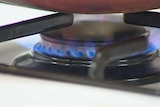 A stove top gas burner cooking