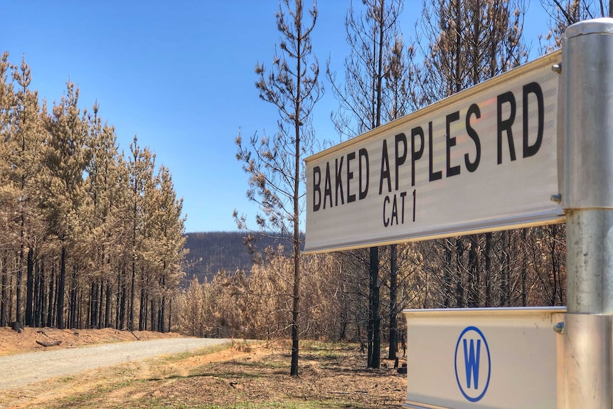A street sign reading 'Baked Apples Road' with burnt trees in the background.