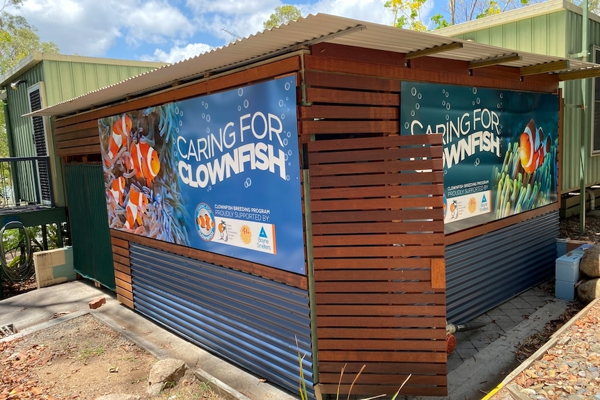Small shed with a sign that says 'Caring for Clownfish'