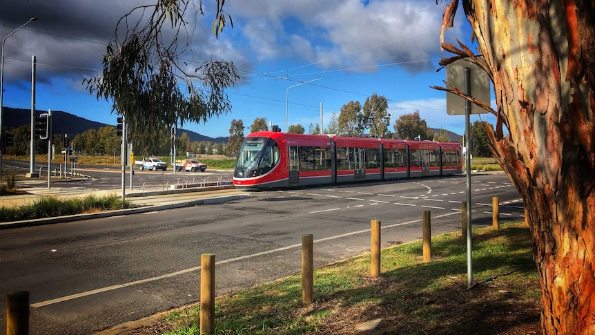 A red light-rail vehicles travels through a road intersection.