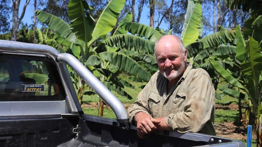 A man leaning against a ute with banana trees behind him.