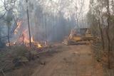 A bulldozer pushes down bushland to create a fire break.