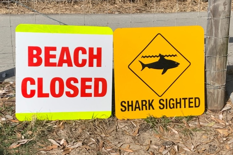 A beach closed sign at Kingscliff