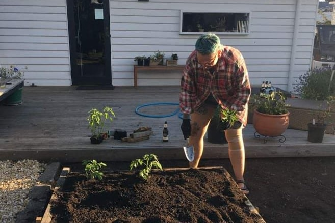 Person planting seedings in a raised vegetable bed, with cardboard used to prevent weed growth.