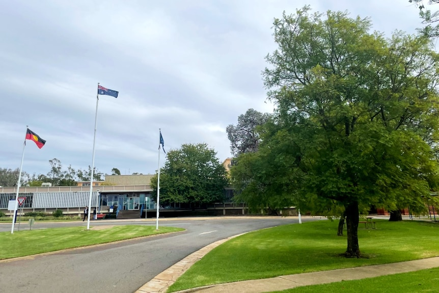 A campus of a university in a regional area with three flag poles in the foreground and a building in the background