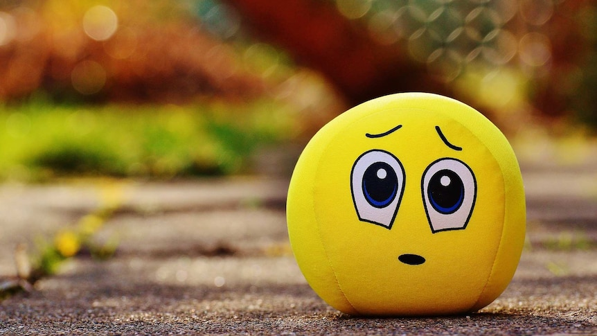 An emoji toy with an apologetic face sits on the ground.