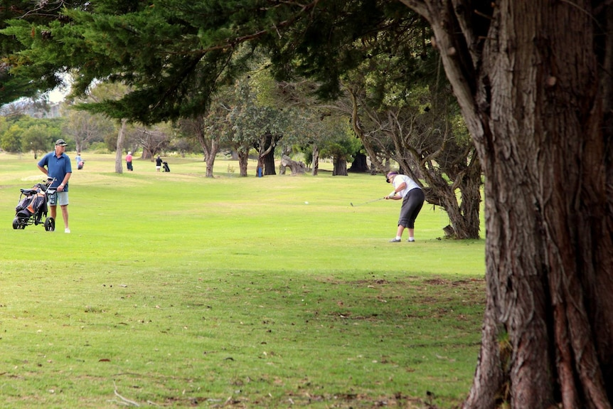 Two golfers on a fairway.