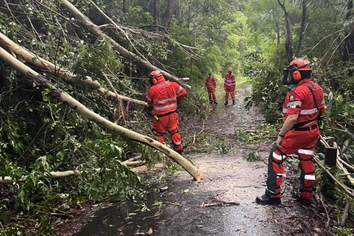 SES crews cut away branches covering a road.