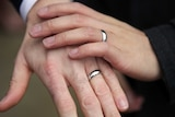 Newly exchanged same-sex wedding rings