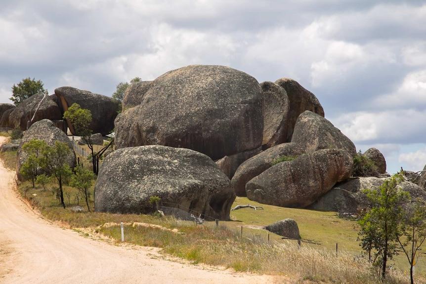 Rock Forest near Bathurst, NSW