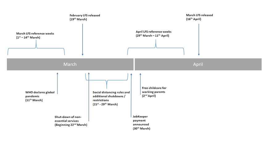 A timeline showing when the labour force figures were collected compared to coronavirus developments