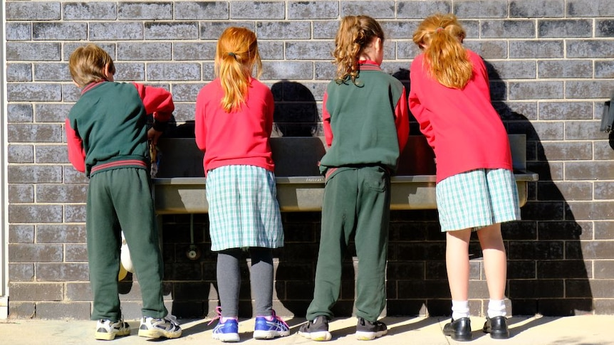 Four primary school children stand with their backs to the camera and wash their hands at a long metal basin on a brick wall.