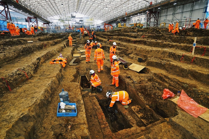 Under a huge marquee dozens of archaeologists are working to exhume skeletons.