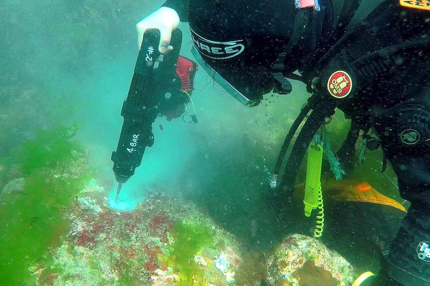 Un buzo con traje completo y capucha usa un taladro submarino para hacer un pequeño agujero en una roca en el fondo del océano.