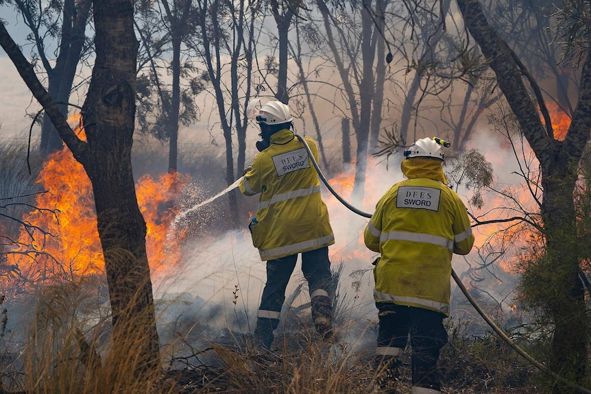 Two firefighters use a fire hose to try to extinguish flames from a bushfire.