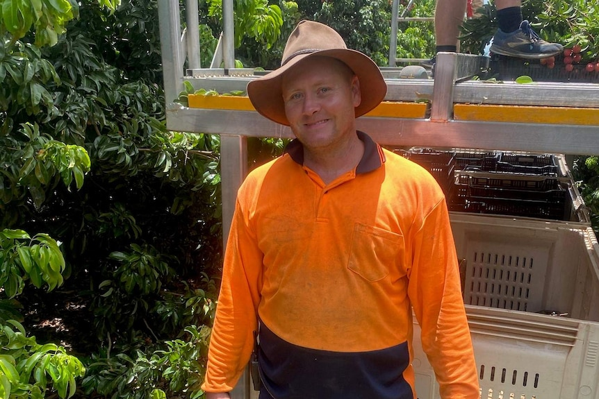 a man wearing a hat and fluro orange shirt standing in front of lychee trees