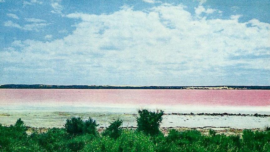 Pink Lake near Esperance in the 1970s.