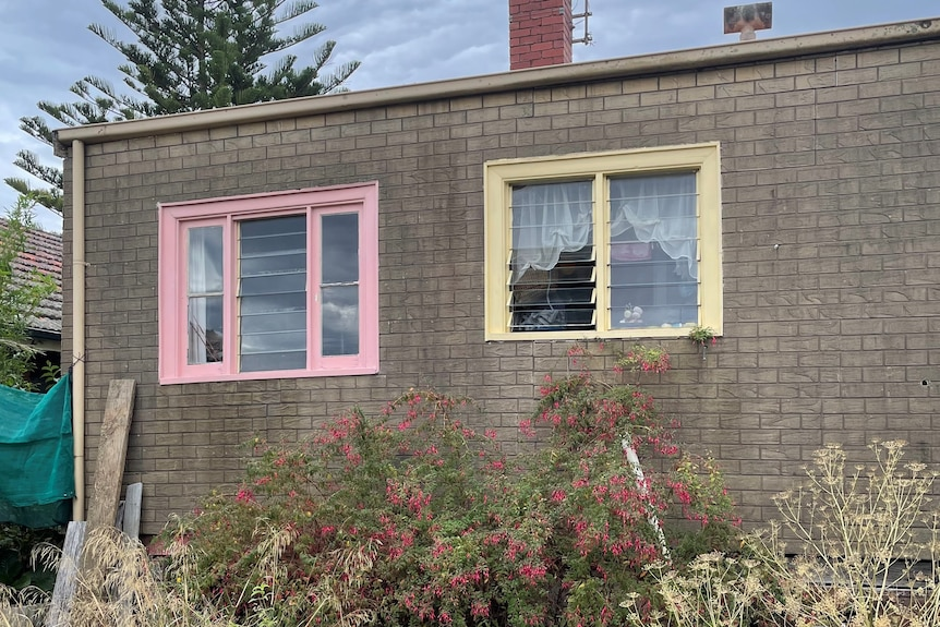Back of building with fake brick cladding, a pink window, a yellow window and overgrown garden