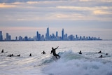 Surfer surfing with gold coast highrise skyline in background.