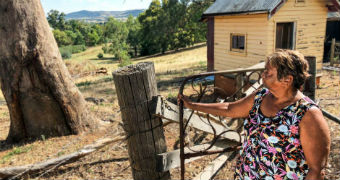 Doreen Webster leans on gate and looks out over country landscape.