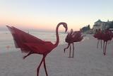 Sculptures by the Sea mi no 5