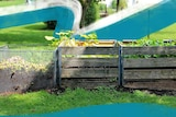 Three crates containing compost and plants sit in a vast green garden.