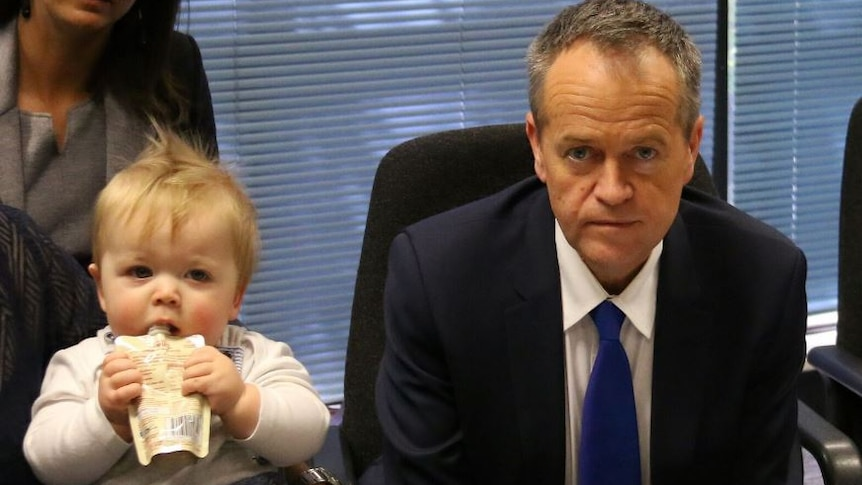 Baby sips its drink next to Bill Shorten, looking straight on at a Marriage equality round table discussion