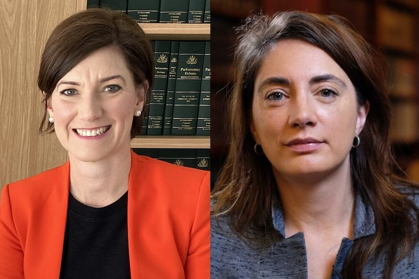 Two close up images of female politicians Nicolle Flint and Michelle Lensink