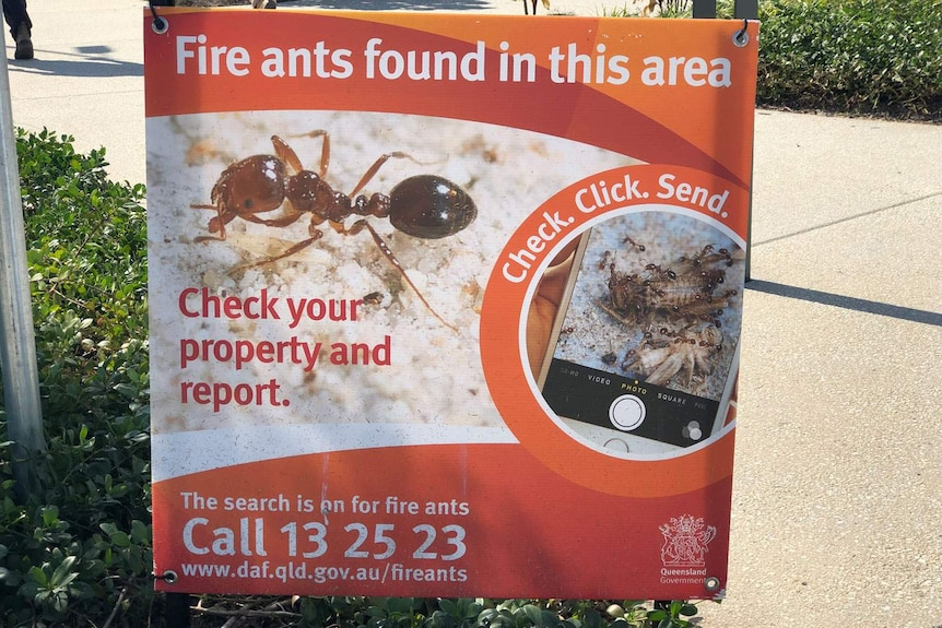 Fire ant warning sign at Ripley playground at new housing estate.