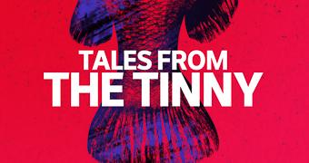 Tales from the Tinny custom