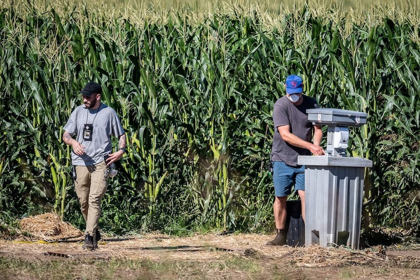 Two production staff members, one wearing a face mask, are seen in a cornfield.