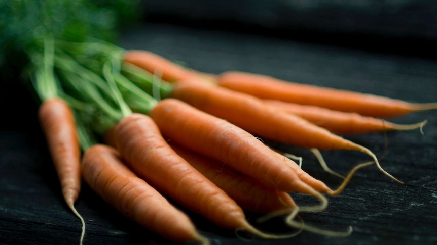 Bunch of small carrots for story about what to plant when