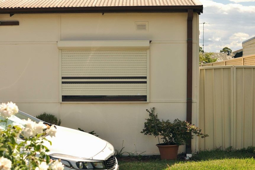 A home window with metal shutters on it, in the foreground is a car bonnet and a rose bush.